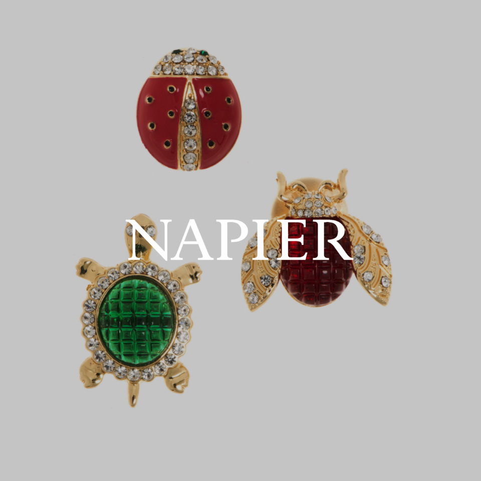 Brand logo of Napier